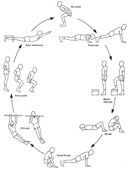 mma circuit training  new workout