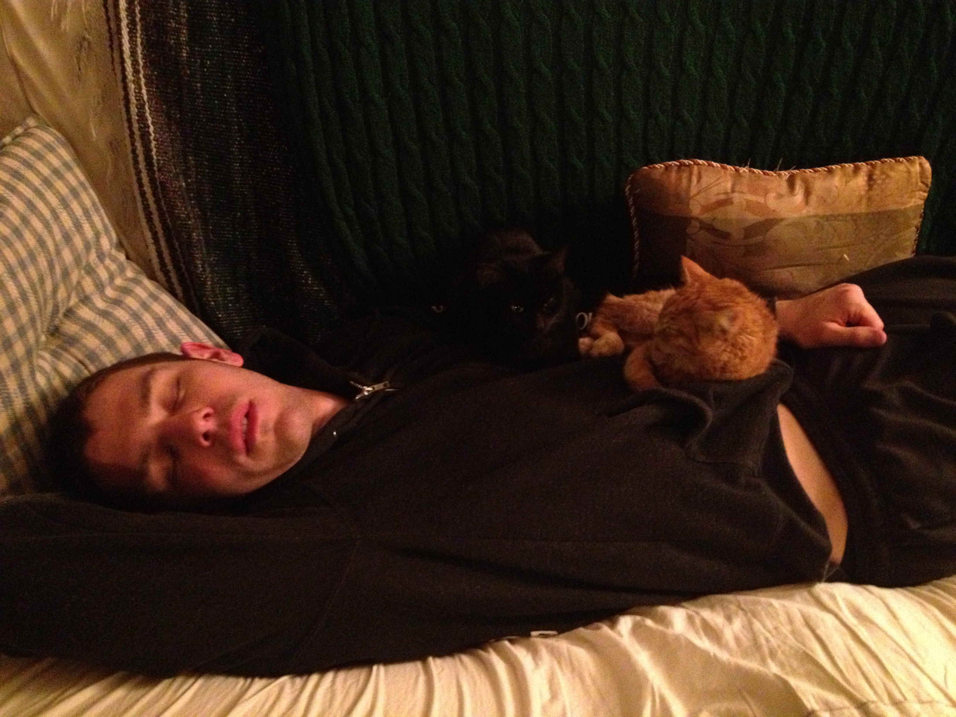 Chris taking a rest day with the kittens