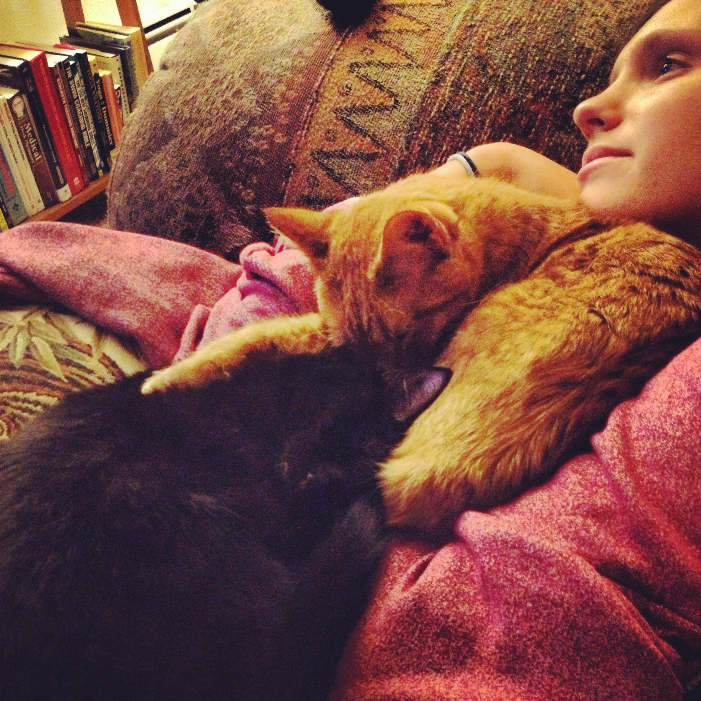 Kitty pile on Alana for Castle marathon!