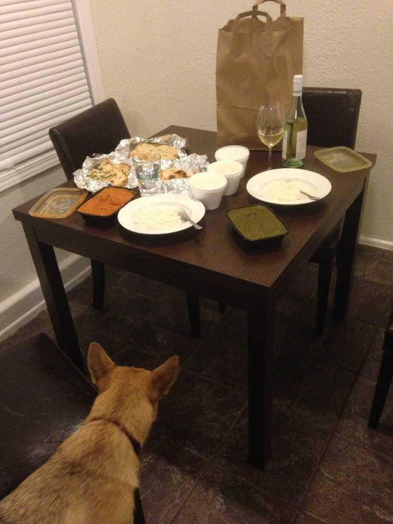 New Year's Eve meal (Indian food)...with a hungry Noke nearby