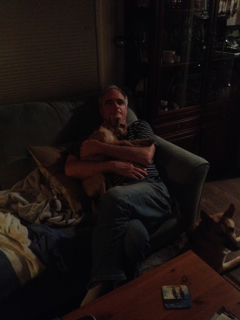 Puppy falling asleep on my dad's lap