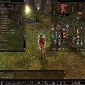 neverwinter-nights-image279255