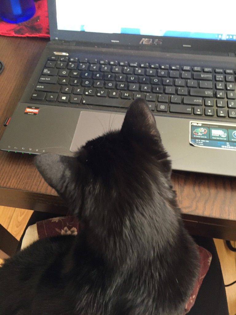 Nymeria working away from home