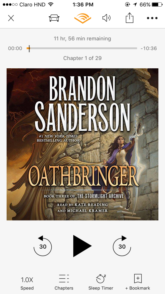 But, one of Fit's favorite authors came out with another book in the beloved Stormlight Archive series